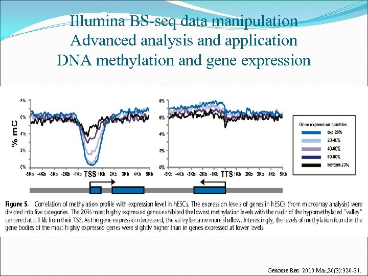 Illumina BS-seq data manipulation Advanced analysis and application DNA methylation and gene expression Genome