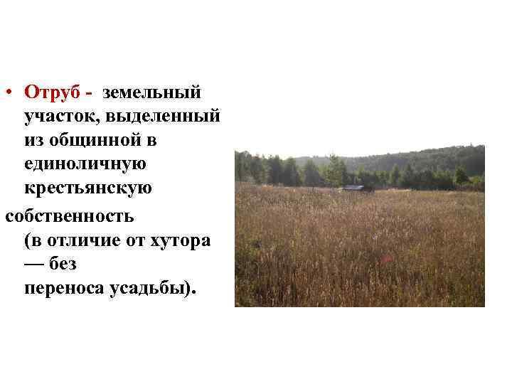 земельный участок выделенный из общинной земли