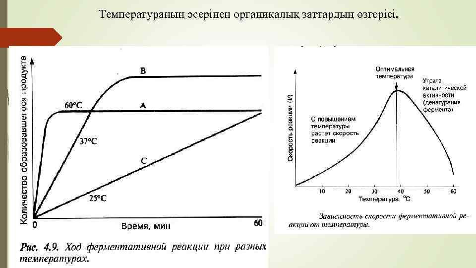 Температураның әсерінен органикалық заттардың өзгерісі.