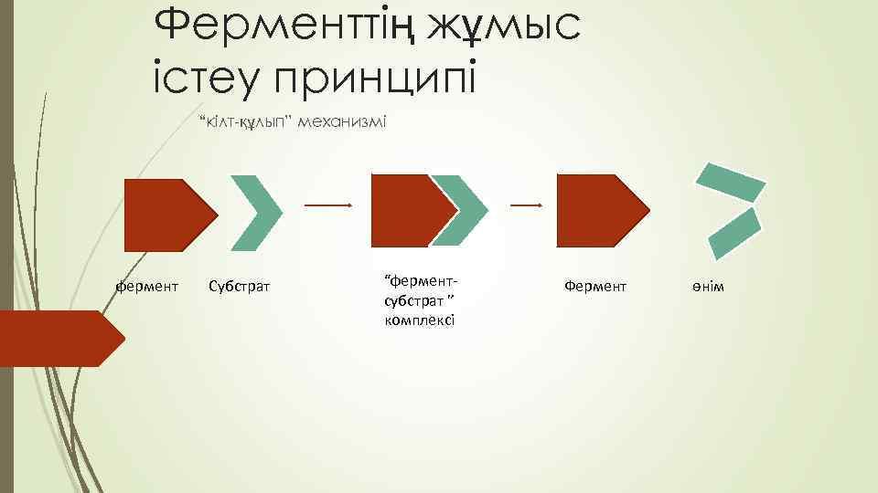 """Ферменттің жұмыс істеу принципі """"кілт-құлып"""" механизмі фермент Субстрат """"ферментсубстрат """" комплексі Фермент өнім"""