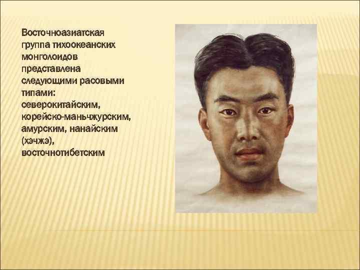 Восточноазиатская группа тихоокеанских монголоидов представлена следующими расовыми типами: северокитайским, корейско-маньчжурским, амурским, нанайским (хэчжэ), восточнотибетским