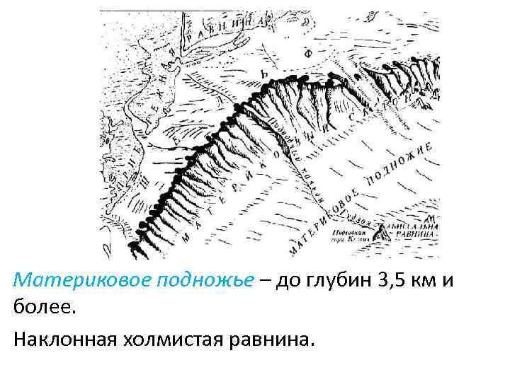 Материковое подножье – до глубин 3, 5 км и более. Наклонная холмистая равнина.