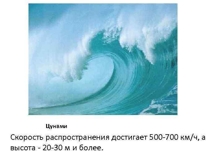 Цунами Скорость распространения достигает 500 -700 км/ч, а высота - 20 -30 м и