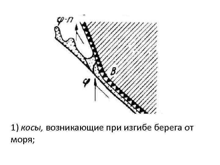 1) косы, возникающие при изгибе берега от моря;