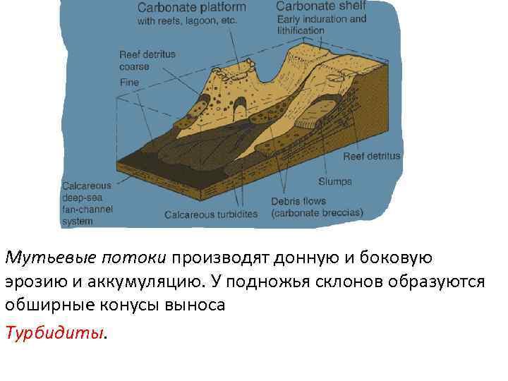 Мутьевые потоки производят донную и боковую эрозию и аккумуляцию. У подножья склонов образуются обширные