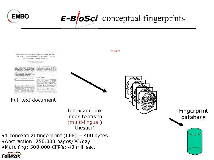 conceptual fingerprints Full text document Index and link index terms to (multi-lingual) thesauri •