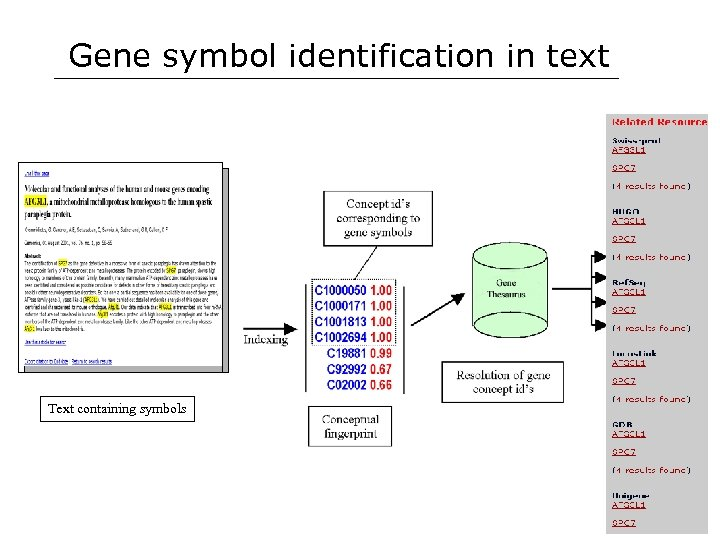 Gene symbol identification in text Text containing symbols