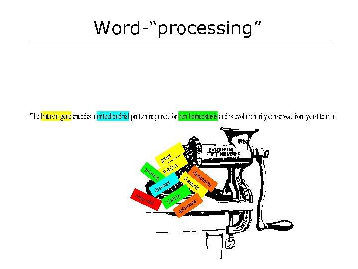 "Word-""processing"" e gen pr DA FR ote in de ple tax tion in fra"