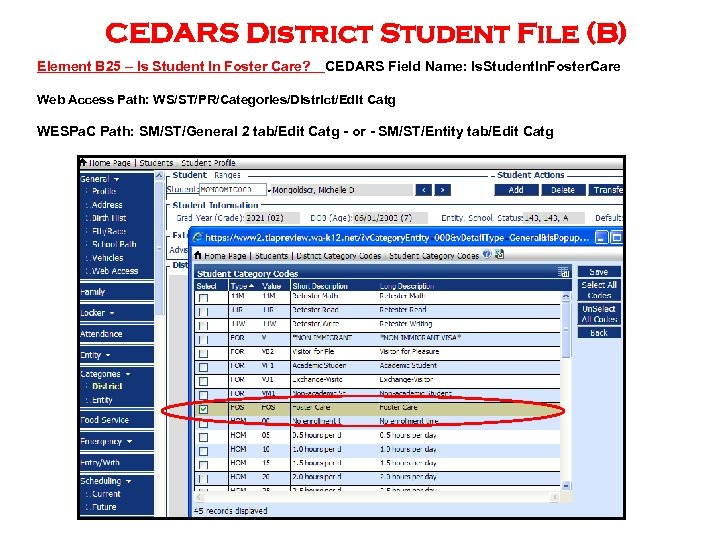 CEDARS District Student File (B) Element B 25 – Is Student In Foster Care?