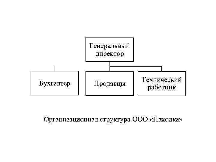 Генеральный директор Бухгалтер Продавцы Технический работник Организационная структура ООО «Находка»