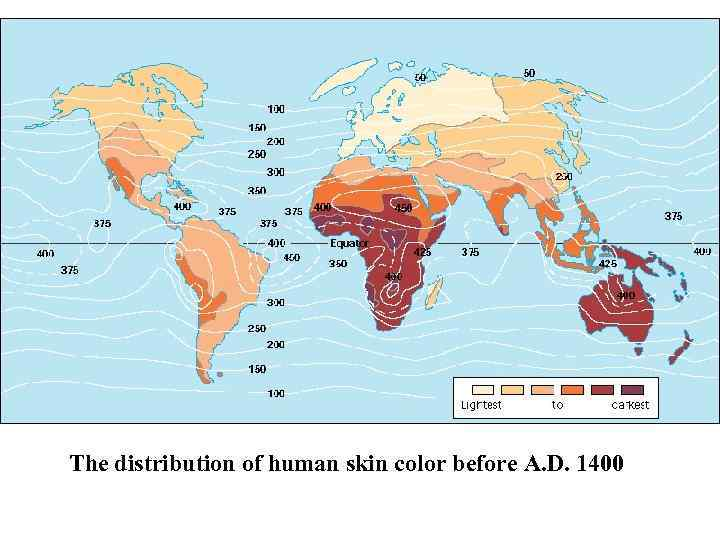 The distribution of human skin color before A. D. 1400