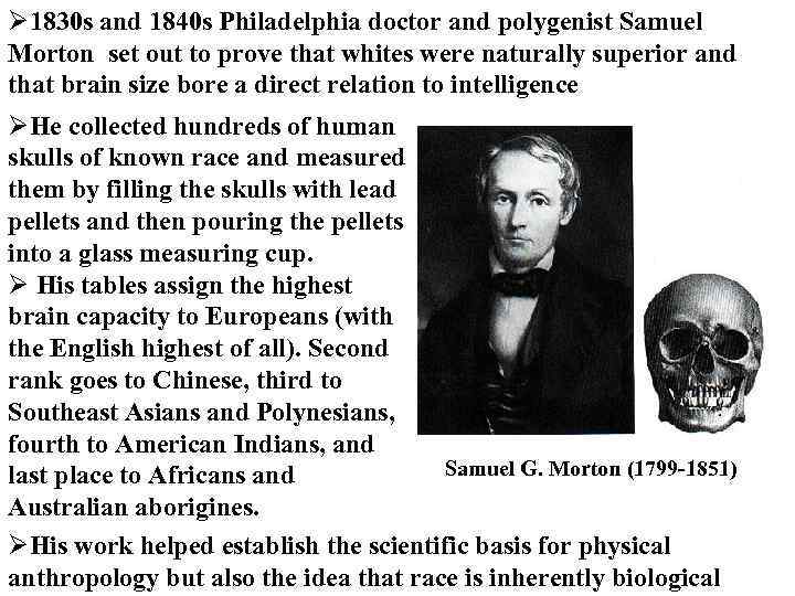 Ø 1830 s and 1840 s Philadelphia doctor and polygenist Samuel Morton set out