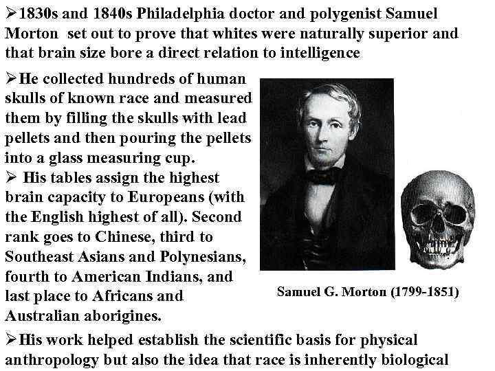 Ø 1830 s and 1840 s Philadelphia doctor and polygenist Samuel Morton set out