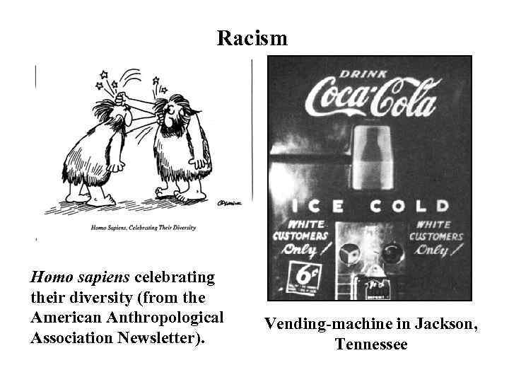Racism Homo sapiens celebrating their diversity (from the American Anthropological Association Newsletter). Vending-machine in