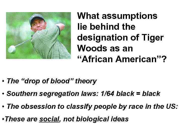"What assumptions lie behind the designation of Tiger Woods as an ""African American""? •"