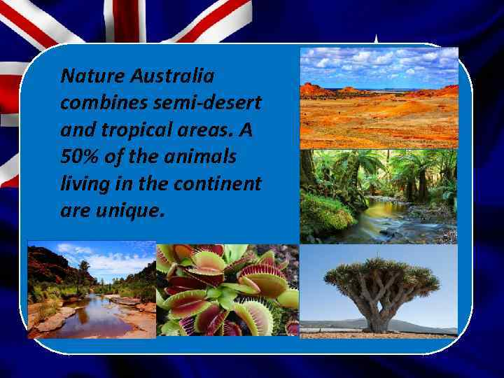 Nature Australia combines semi-desert and tropical areas. A 50% of the animals living in