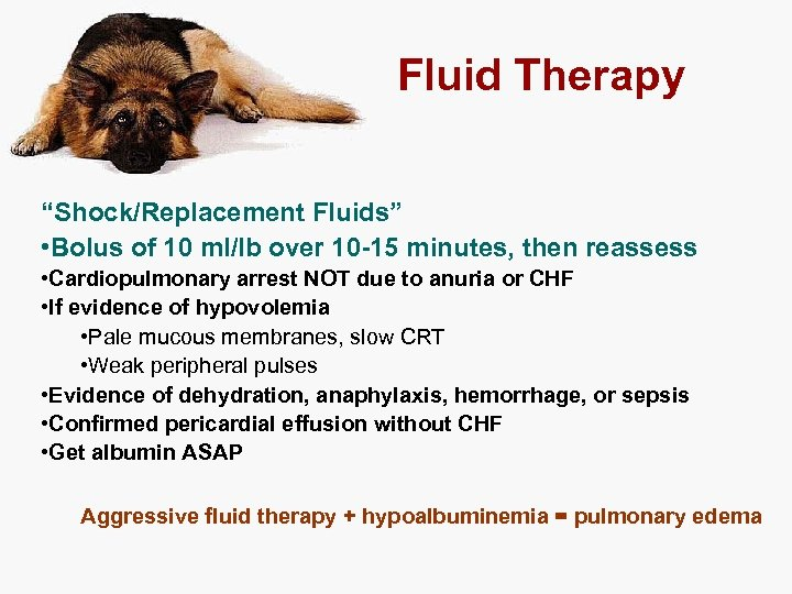 "Fluid Therapy ""Shock/Replacement Fluids"" • Bolus of 10 ml/lb over 10 -15 minutes, then"