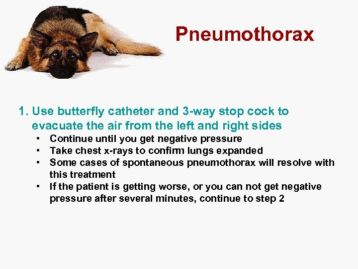 Pneumothorax 1. Use butterfly catheter and 3 -way stop cock to evacuate the air