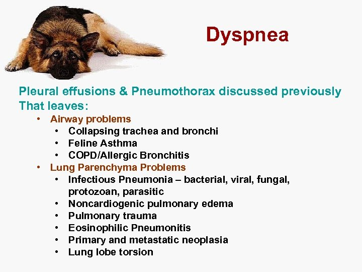 Dyspnea Pleural effusions & Pneumothorax discussed previously That leaves: • Airway problems • Collapsing
