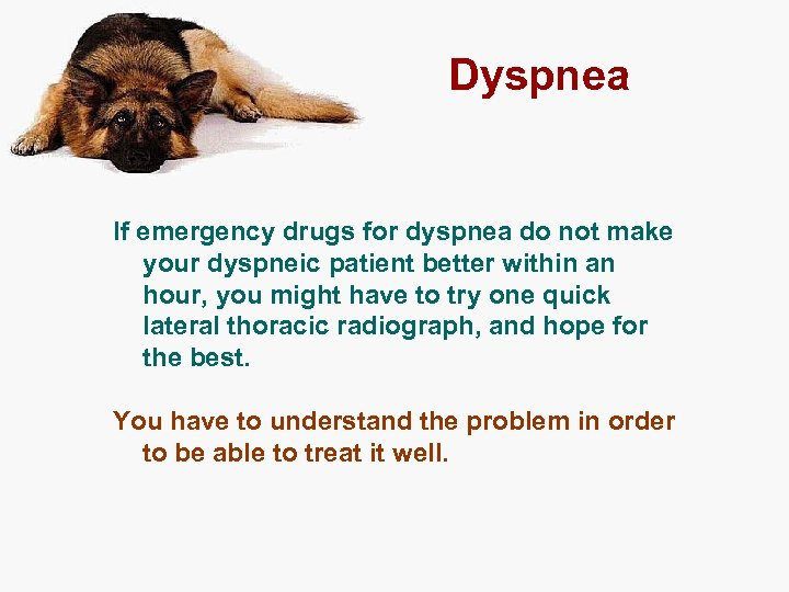 Dyspnea If emergency drugs for dyspnea do not make your dyspneic patient better within