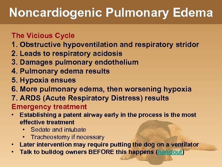 Noncardiogenic Pulmonary Edema The Vicious Cycle 1. Obstructive hypoventilation and respiratory stridor 2. Leads