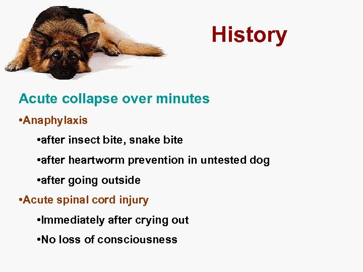 History Acute collapse over minutes • Anaphylaxis • after insect bite, snake bite •