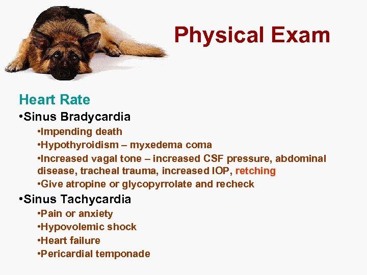 Physical Exam Heart Rate • Sinus Bradycardia • Impending death • Hypothyroidism – myxedema