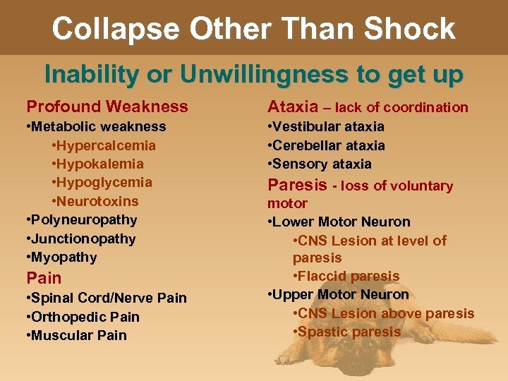 Collapse Other Than Shock Inability or Unwillingness to get up Profound Weakness Ataxia –