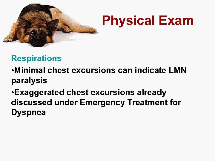 Physical Exam Respirations • Minimal chest excursions can indicate LMN paralysis • Exaggerated chest