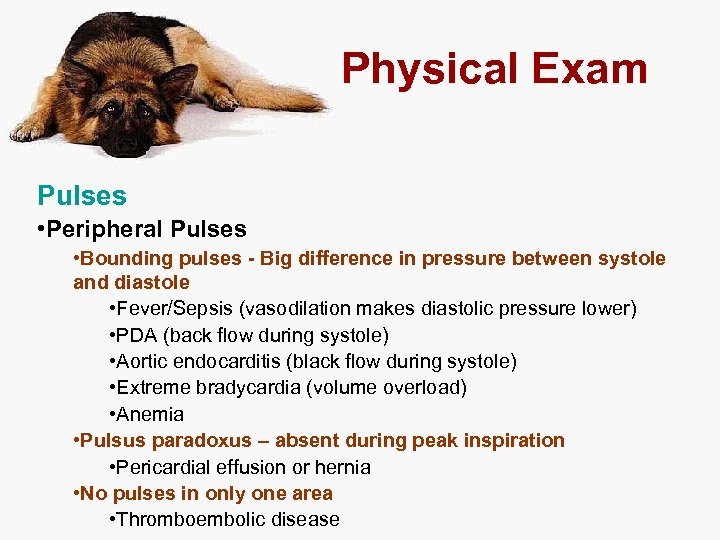 Physical Exam Pulses • Peripheral Pulses • Bounding pulses - Big difference in pressure