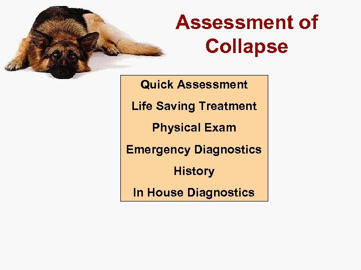 Assessment of Collapse Quick Assessment Life Saving Treatment Physical Exam Emergency Diagnostics History In
