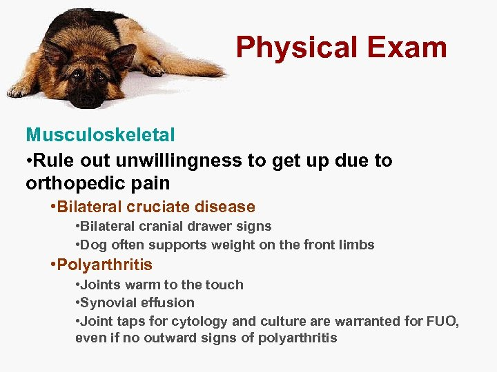 Physical Exam Musculoskeletal • Rule out unwillingness to get up due to orthopedic pain
