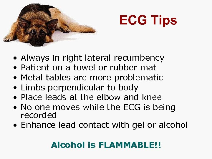 ECG Tips • • • Always in right lateral recumbency Patient on a towel