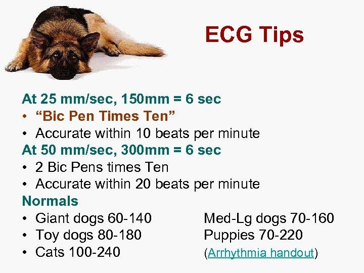 """ECG Tips At 25 mm/sec, 150 mm = 6 sec • """"Bic Pen Times"""