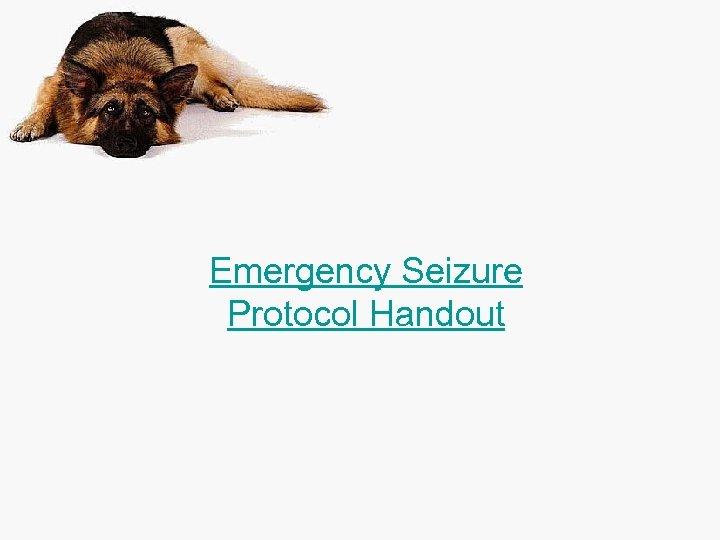 Emergency Seizure Protocol Handout
