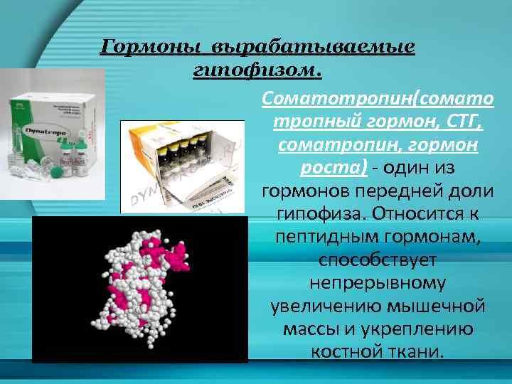 Гормоны вырабатываемые гипофизом. Соматотропин(сомато тропный гормон, СТГ, соматропин, гормон роста) - один из гормонов