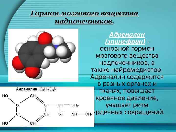 Гормон мозгового вещества надпочечников. Адреналин (эпинефрин) основной гормон мозгового вещества надпочечников, а также нейромедиатор.