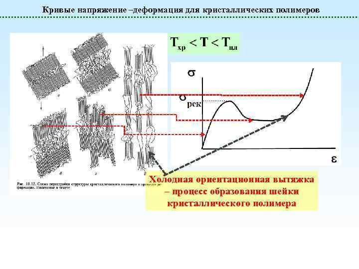 Кривые напряжение –деформация для кристаллических полимеров Холодная ориентационная вытяжка – процесс образования шейки кристаллического