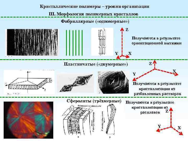 Кристаллические полимеры – уровни организации III. Морфология полимерных кристаллов Фибриллярные ( «одномерные» ) Z