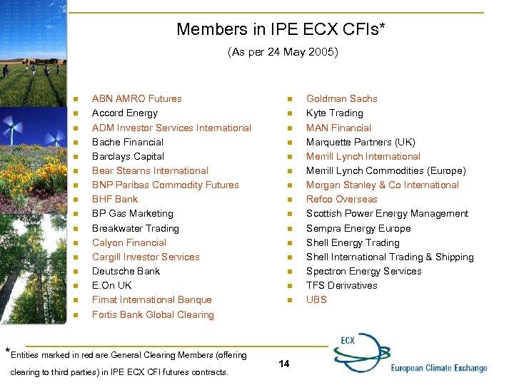 Members in IPE ECX CFIs* (As per 24 May 2005) n n n n