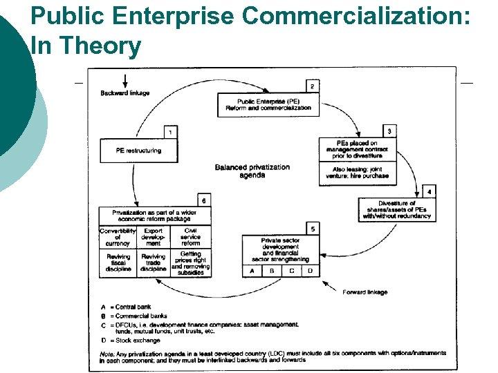 Public Enterprise Commercialization: In Theory