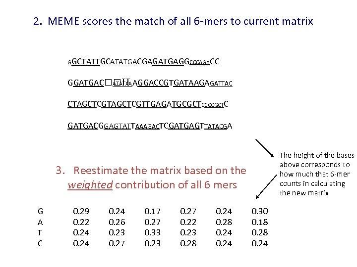 2. MEME scores the match of all 6 -mers to current matrix GGCTATTGCATATGACGAGATGAGGCCCAGACC GGATGAC