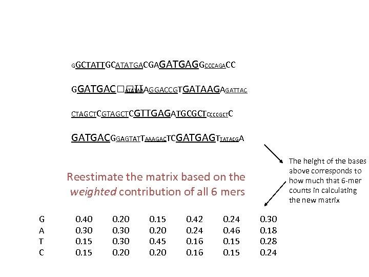 GGCTATTGCATATGACGA GATGAGGCCCAGACC GGATGAC TTAGGACCGTGATAAGAGATTAC ATATAA CTAGCTCGTTGAGATGCGCTCCCCGCTC GATGACGGAGTATTAAAGACTCGATGAGTTATACGA The height of the bases above corresponds