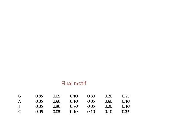 Final motif G A T C 0. 85 0. 05 0. 60 0. 30