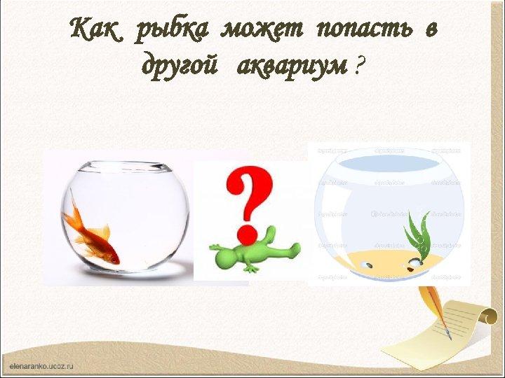 Как рыбка может попасть в другой аквариум ?