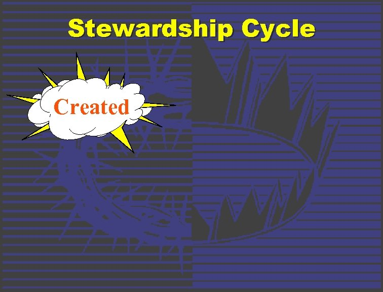 Stewardship Cycle Created