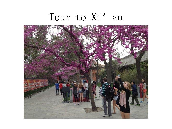 Tour to Xi'an