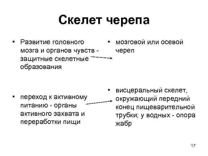 Скелет черепа • Развитие головного • мозговой или осевой мозга и органов чувств -