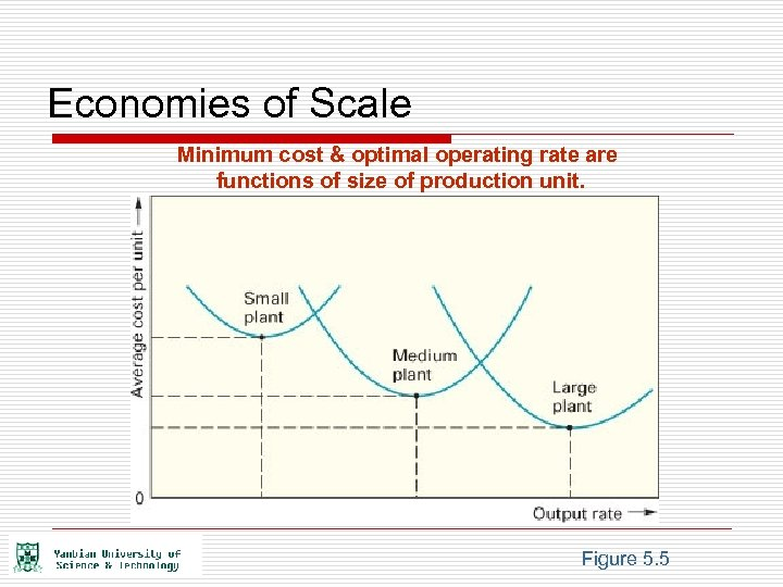 Economies of Scale Minimum cost & optimal operating rate are functions of size of