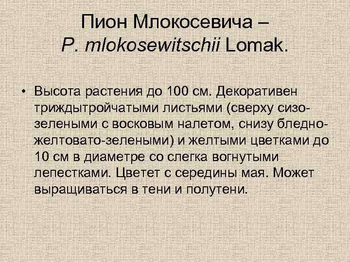 Пион Млокосевича – P. mlokosewitschii Lomak. • Высота растения до 100 см. Декоративен триждытройчатыми